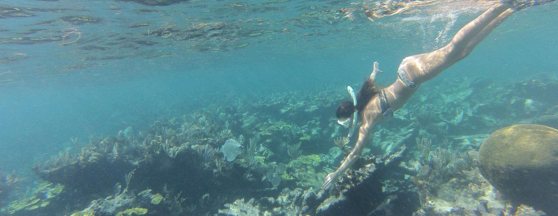 Green Turtle Marina Bahamas