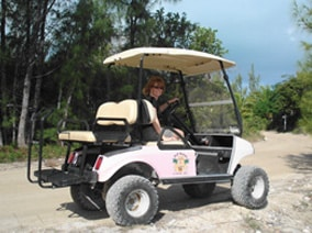 Green Turtle Club Resort & Marina - Golf Cart & Boat Rentals Green on beach themed entertainment, beach themed shoes, beach themed doors, beach themed cabinets, beach themed signs, texas beach golf carts, beach themed cars, beach themed fencing, beach cart wheels, beach themed apartments, palm beach golf carts, beach themed hardware, beach themed home, beach themed accessories, beach themed golf course, beach themed storage, beach themed office supplies,