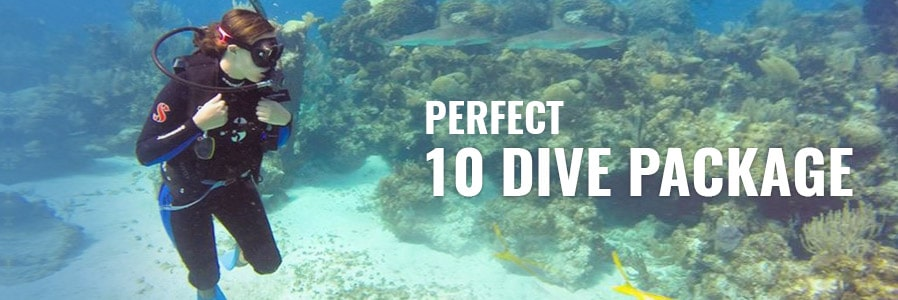 10 Dive Package