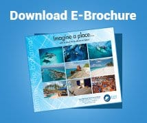 Download E Brochure