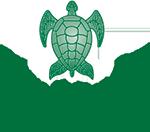 Green Turtle & Marina